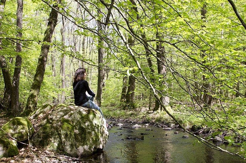STF Nyrups Naturhotell i Skåne nominerat i två kategorier i STF:s Årets Kudde!